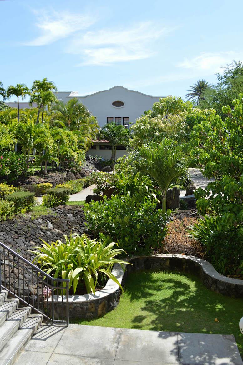 Chaminade University of Honolulu, Hawaii | UNIVERSITY