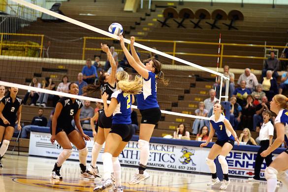 Sports Volleyballpieni