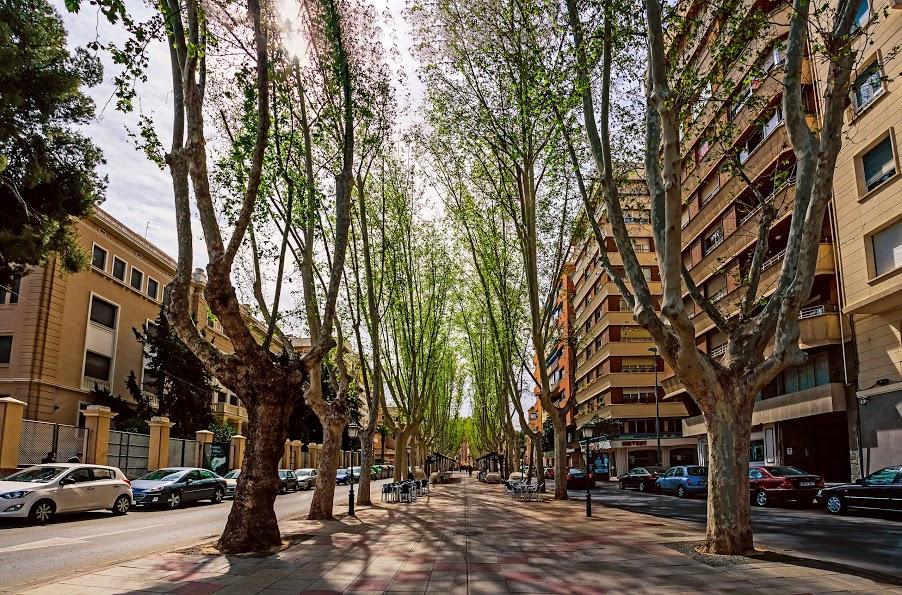 Email_cesio_n_fotos_J__Carlos_Valera_Bernal_Panoramica_Alfonso_X